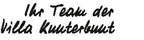 Team der Villa Kunterbunt